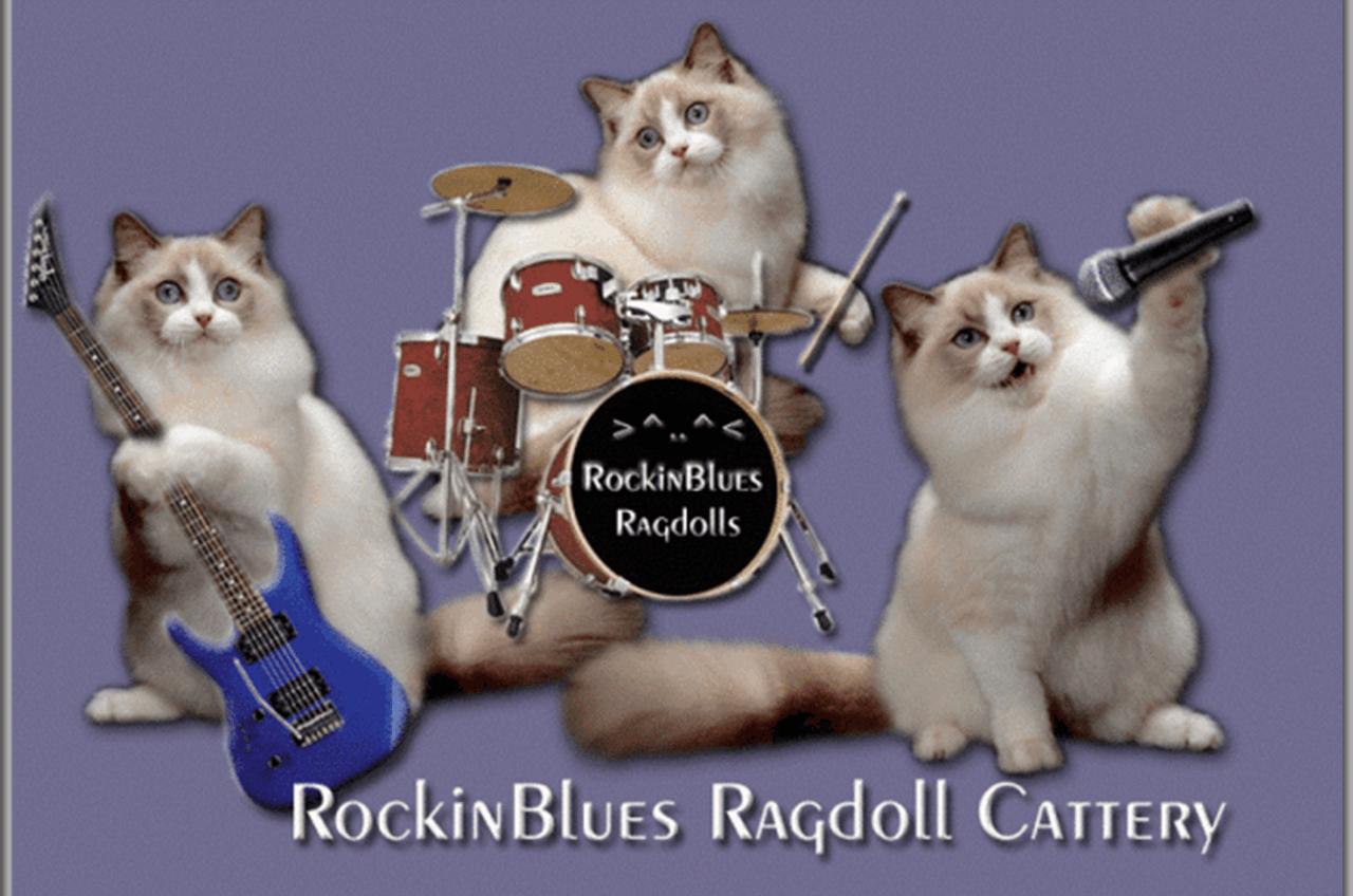 RockinBlues Rags Ragdolls